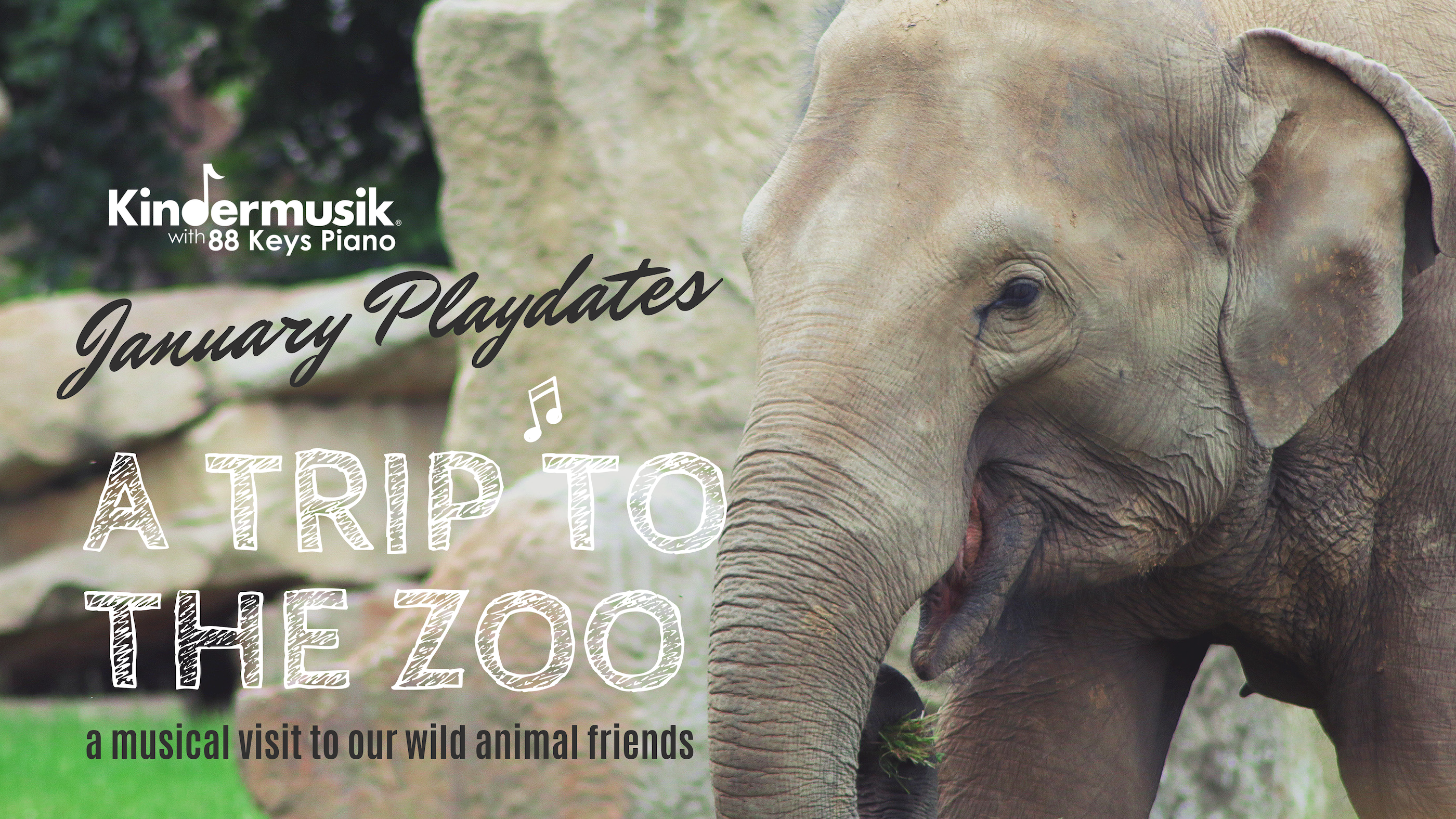 January Playdates: A Trip to the Zoo